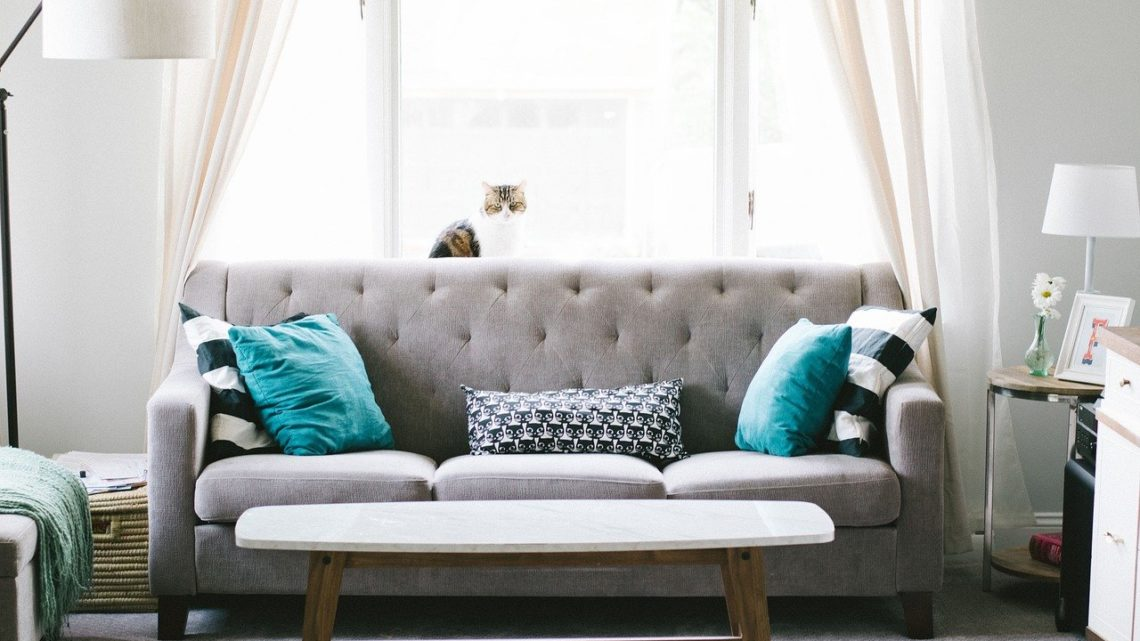 5 Dinge, die Sie vor dem Kauf eines Sofas beachten sollten